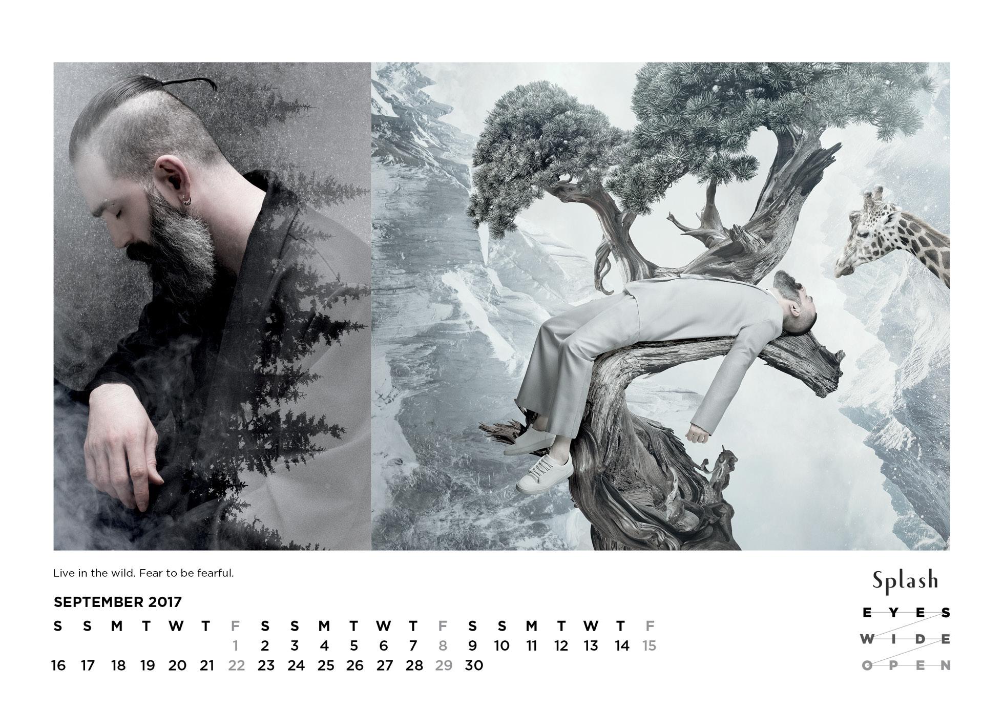 Splash Calendar 2017 - 1960 x 138620.jpg