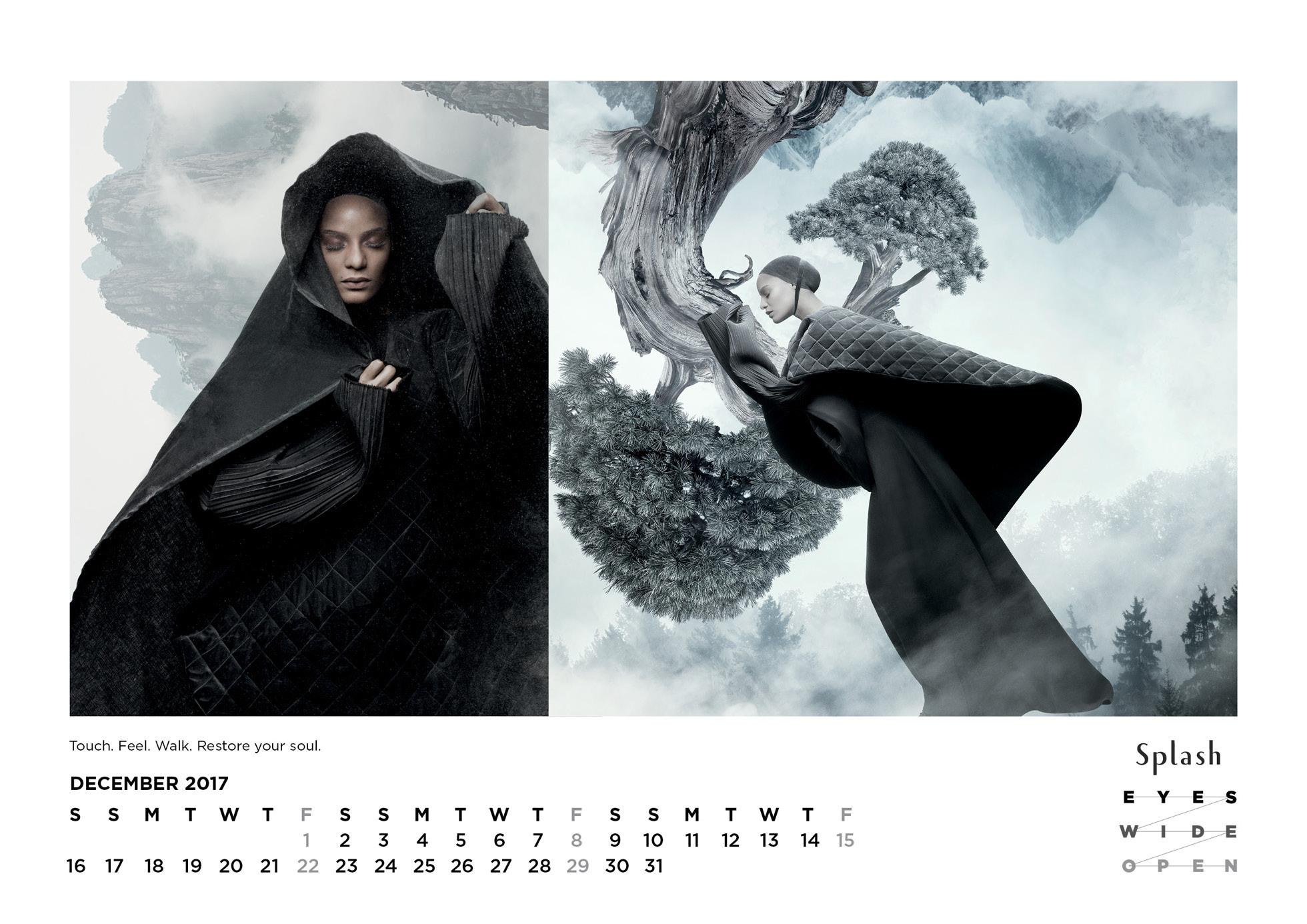 Splash Calendar 2017 - 1960 x 138626.jpg